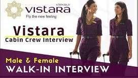 Vistara Airlines Hiring Male & Female 10th, 12th Pass for Vistara Airl