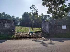 Aluva uc College road front  1.25acre,50cent cent 5.50lakh