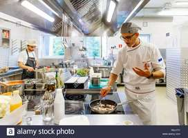 Need urgent cook /chef for russia