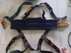 harness Protecta international