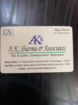 Wanted Assistant Under CA