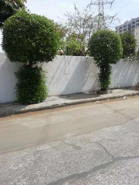 2bhk house for rent in piplod near aakash project piplod