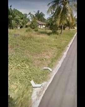 Jual tanah darat dipinggir jalan
