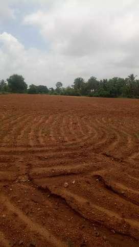 Agriculture plain land near Nanjangud