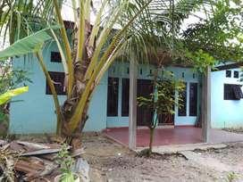 Rumah petak dua pintu