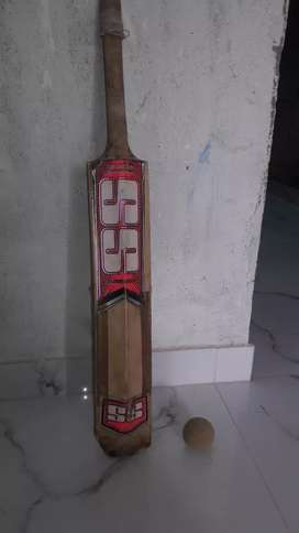 SS bat with one balls