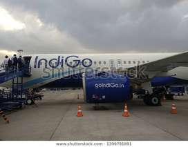 Airlines INDIG0 jobs urgent Hiring Full or Part Time Apply Fast , Dear