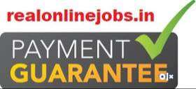 Do Daily Payment Job - Earn Rs.1500 daily from HOME 0