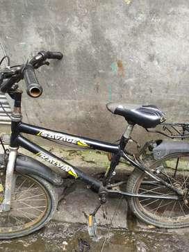 Saveng cycle