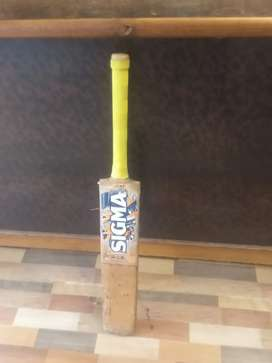 Want to sell my english willow cricket bat