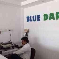 Bluedart process jobs in Gurgaon and Delhi