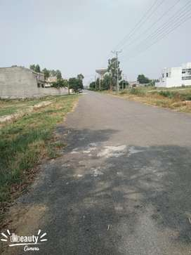 Kanla plot for sale in Chinar bagh Mehran block demand 62 lac