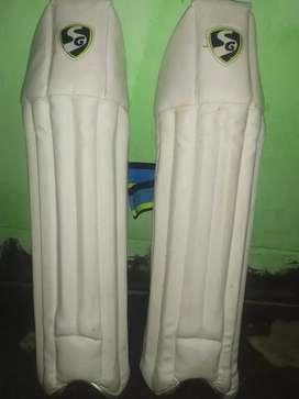 Cricket keeping pad