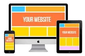 Professional Website