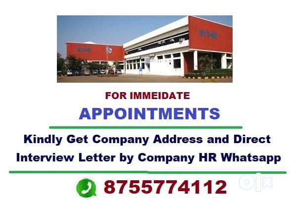 Work for Company by Computer, Mobile, Whatsapp and Email.-# 0
