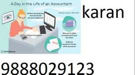 immigration need accountant for for sector 44 tour and travel company