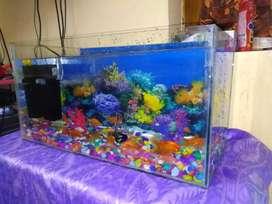 Fish Aquarium tank for sale  unboxing