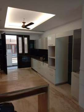3 bhk newly constructed flat for Rent in Ashoka Enclave sec 35, find.