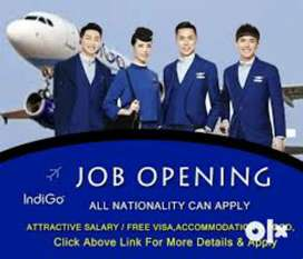 Hiring for ground staff in Indigo Airlines in your nearest location