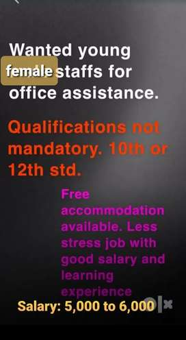 Female office assistant wanted