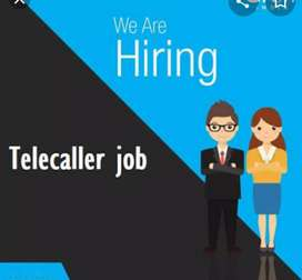 Required female fresher tellecaller for domestic call center
