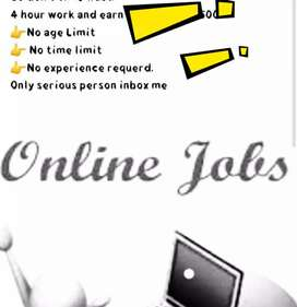 We provide home based work for male and female