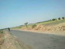 2.3 acre agriculture land for sale (50 kms from Rewa)