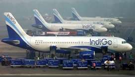 Indigo Ground Staff Job Hiring
