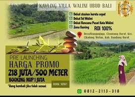 Kavling Villa Walini Ubud Bali