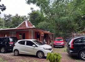 Dikontrakkan Rmh Limasan dan Tanah untuk Usaha Kafe Warung,Sanggar dll