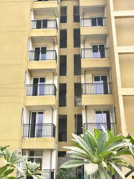 2BHK Flat for Family And Bachelor