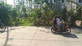 Tanah rata di jalan utama dan strategis di Ngaliyan TP