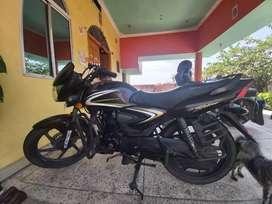 Honda Shine 125 cc