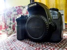 Canon 60d with Youngnuo 50mm 1.8