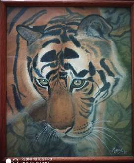 Royal bengal tiger, watercolor on watercolor paper