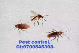 Johnson /Pest control