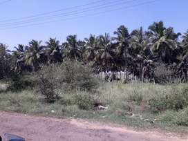 15 Cents Industrial Land for Sale at Seerapalayam- MalumitchamPatti