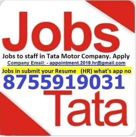 Jobs in tata motors Whats app number-  87559,19031 , only whats app