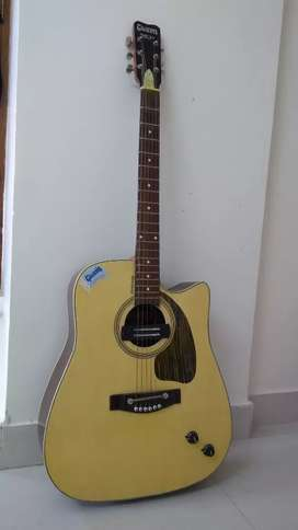 Gibson Acoustic Guitar with Bag