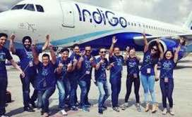 JOB IN INDIGO AIRLINE COMPANY FOR FRESHER/EXPERIENCE ALL CANDIDATES.