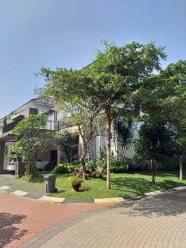 Dijual Rumah Bagus Siap Huni di Kebayoran Bintaro Sek 9 (SC1570)