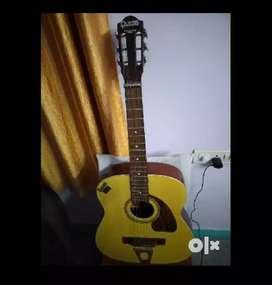 Hawain guitar