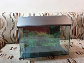 1.5 Feet fish tank for sale in Cheap rate