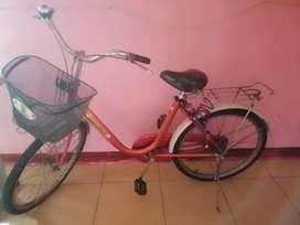 Sepeda mini besar phoniex