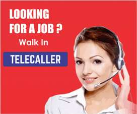 We need two professional female telecaller