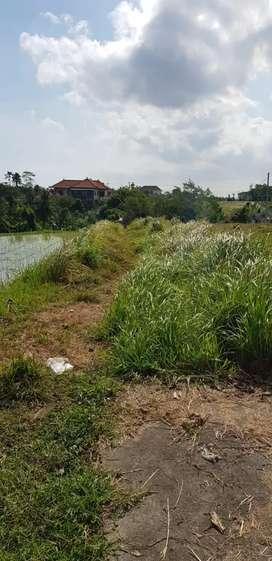 Tanah Aspek Perumahan 15Are di Padang Linjong