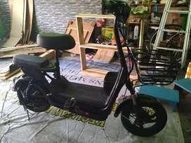 jual sepeda listrik u winfly red fish hitam