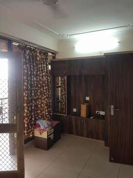 Vaishali Flat one Bhk Furnished Multistory Silver Crown Gandhi Pah Wst