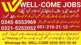 [Domestic JOBS] by WELL-COME Islamabad