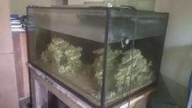 Aquarium (P=120cm L=72 T=64)